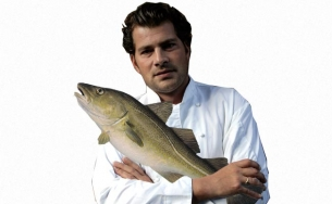 Ed Baines Fish Stock